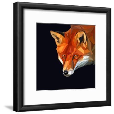 Red Fox Head Intensivewatching Something on Dark Background