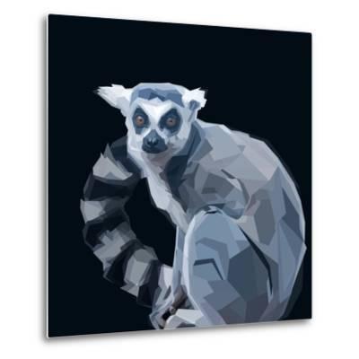 Ring Tailed Grey Lemur Creeping in Shadows on Dark Background