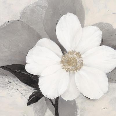 Midday Bloom-Ivo (Lipman)-Premium Giclee Print