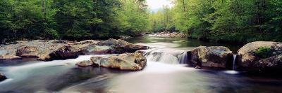 Middle Prong of Little Pigeon River, Great Smoky Mountains National Park, Sevier County--Photographic Print