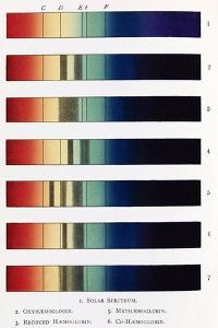 Blood Spectra, 19th Century Artwork by Middle Temple Library