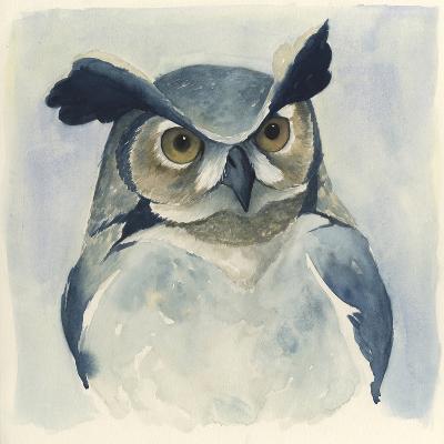 Midnight Aves I-Grace Popp-Art Print