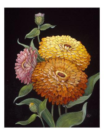 https://imgc.artprintimages.com/img/print/midnight-bloom-ii_u-l-p93qac0.jpg?p=0