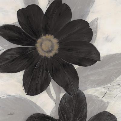 https://imgc.artprintimages.com/img/print/midnight-bloom_u-l-pn7qf20.jpg?p=0