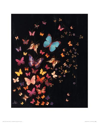 Midnight Butterflies-Lily Greenwood-Giclee Print