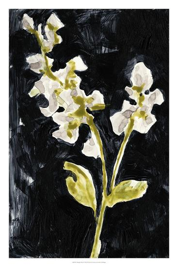Midnight Phlox I-Jennifer Goldberger-Premium Giclee Print