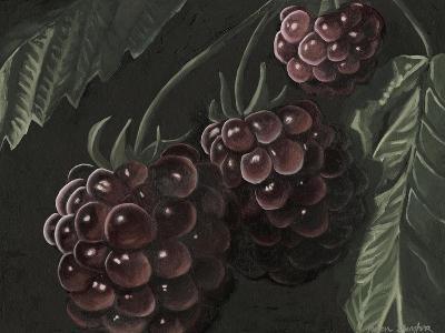 Midnight Raspberries-Megan Meagher-Art Print