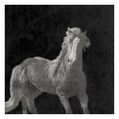 https://imgc.artprintimages.com/img/print/midnight-run_u-l-f8s6gl0.jpg?p=0