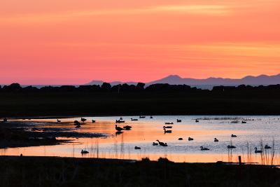 Midnight Sun, Reykjavik, Iceland--Photographic Print