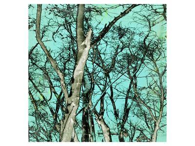 https://imgc.artprintimages.com/img/print/midori-3_u-l-f8bt7s0.jpg?p=0