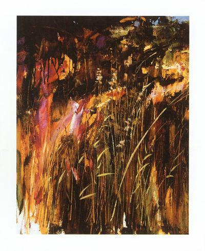 Midsummer Dream II-Rodolfo Tonin-Art Print