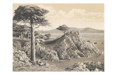 Midway Point 17 Mile Drive 1912--Art Print