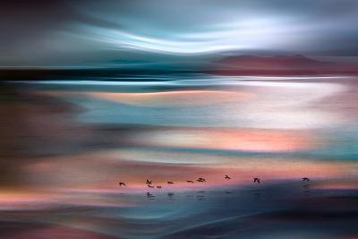 Migrations - Blue Sky-Ursula Abresch-Photographic Print
