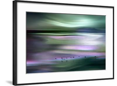 Migrations - Green Sky-Ursula Abresch-Framed Photographic Print