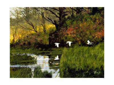 Three Egrets