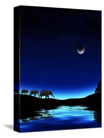 Three Elephants Walking Past Water