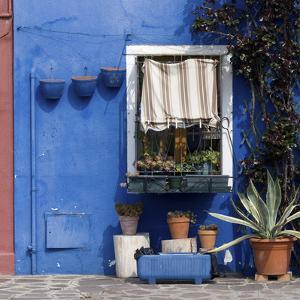 Pot Plants on Blue Painted Venice Building Exterior by Mike Burton