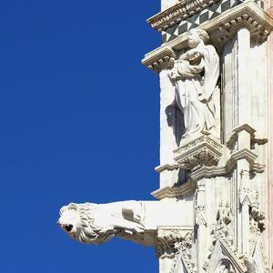 Statue of a Man and a Lion Gargoyle, Architectural Detail, Siena, Italy by Mike Burton