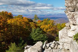 Forest Of Fall Leaves Below Bonticou Crag Trail In The Shawangunk Mts. Mohonk Preserve, New York by Mike Cavaroc
