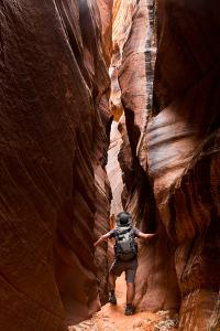 Hiker In Wire Pass Narrows Admires Geology. Paria Canyon-Vermilion Cliffs Wilderness Area, Utah by Mike Cavaroc