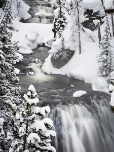 Kepler Cascades in Winter by Mike Cavaroc