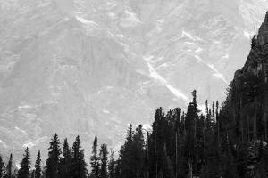 The Teton Mt Peaks Loom Behind A Ridge Of Lodgepole Pine Trees, Grand Teton National Park, Wyoming by Mike Cavaroc