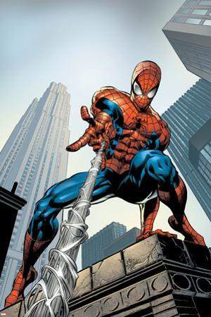 Amazing Spider-Man No.520 Cover: Spider-Man Swimming by Mike Deodato