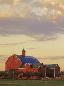 A Farm in Wellington, Ontario, Canada by Mike Grandmaison