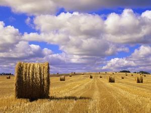 Bales and Clouds Near Sherbrooke, Saskatchewan, Canada. by Mike Grandmaison