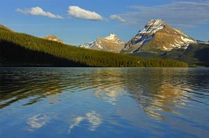 Bow Lake Reflection by Mike Grandmaison