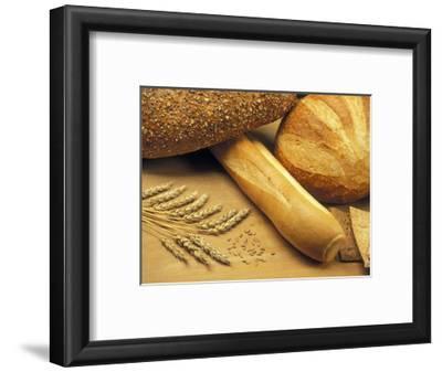 Bread and Wheat, Winnipeg, Manitoba, Canada