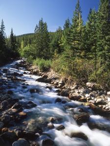 Canada, Alberta, Mountain Stream in Jasper National Park by Mike Grandmaison