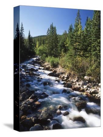 Canada, Alberta, Mountain Stream in Jasper National Park
