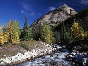 Canada, Alberta, Rampart Creek at Banff National Park by Mike Grandmaison