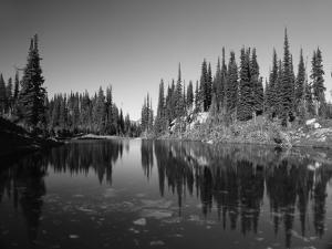 Canada, British Columbia, Revelstoke, Mount Revelstoke National Park by Mike Grandmaison