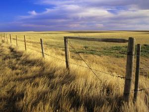 Fence Along Field, South West Saskatchewan, Canada by Mike Grandmaison