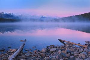 Fog at Dawn at Patricia Lake by Mike Grandmaison