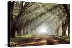 Evergreen Plantation by Mike Jones