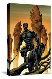 Black Panther No. 1 Cover Art by Mike McKone