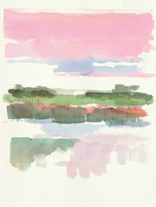 Wetlands by Mike Schick