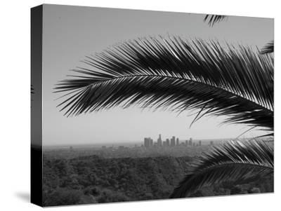 Los Angeles Skyline from Hollywood Hills
