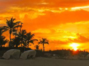 A Blazing Fiery Sunset on a Tropical Beach with Palm Trees by Mike Theiss