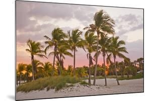 A Red Glowing Sky Backlights Palm Trees at Sunset on the Beach in Key Biscayne by Mike Theiss