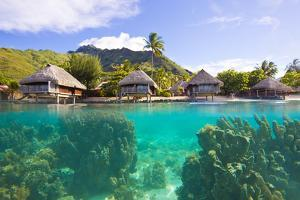 Giant Coral Heads Just Offshore of a Resort with Over-Water Bungalows by Mike Theiss