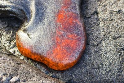 Hot Lava Oozes Out of Cracks in the Ground by Mike Theiss