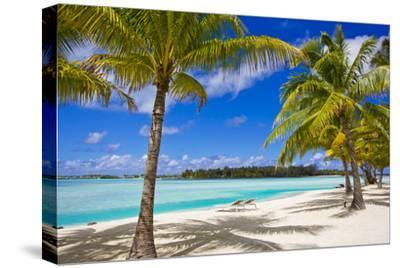 Palm Trees, Lounge Chairs, and White Sand on a Tropical Beach by Mike Theiss