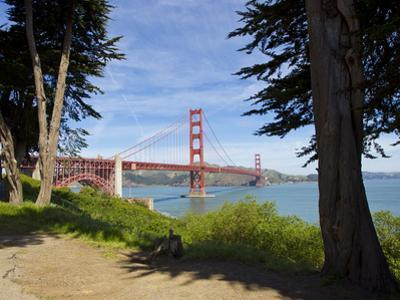 The Golden Gate Bridge Viewed from a Nearby Park by Mike Theiss