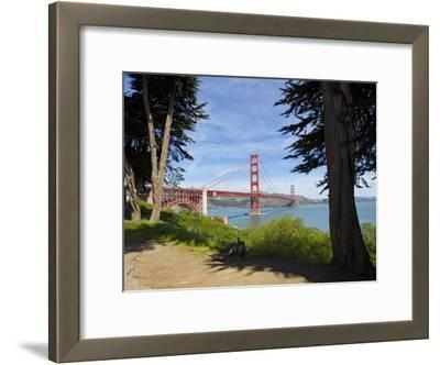 The Golden Gate Bridge Viewed from a Nearby Park