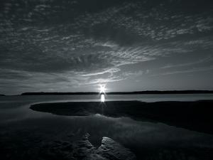 Coastal Path III by Mike Toy