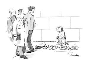 Dog sits selling slippers on the sidewalk, as if he were a peddler. - New Yorker Cartoon by Mike Twohy